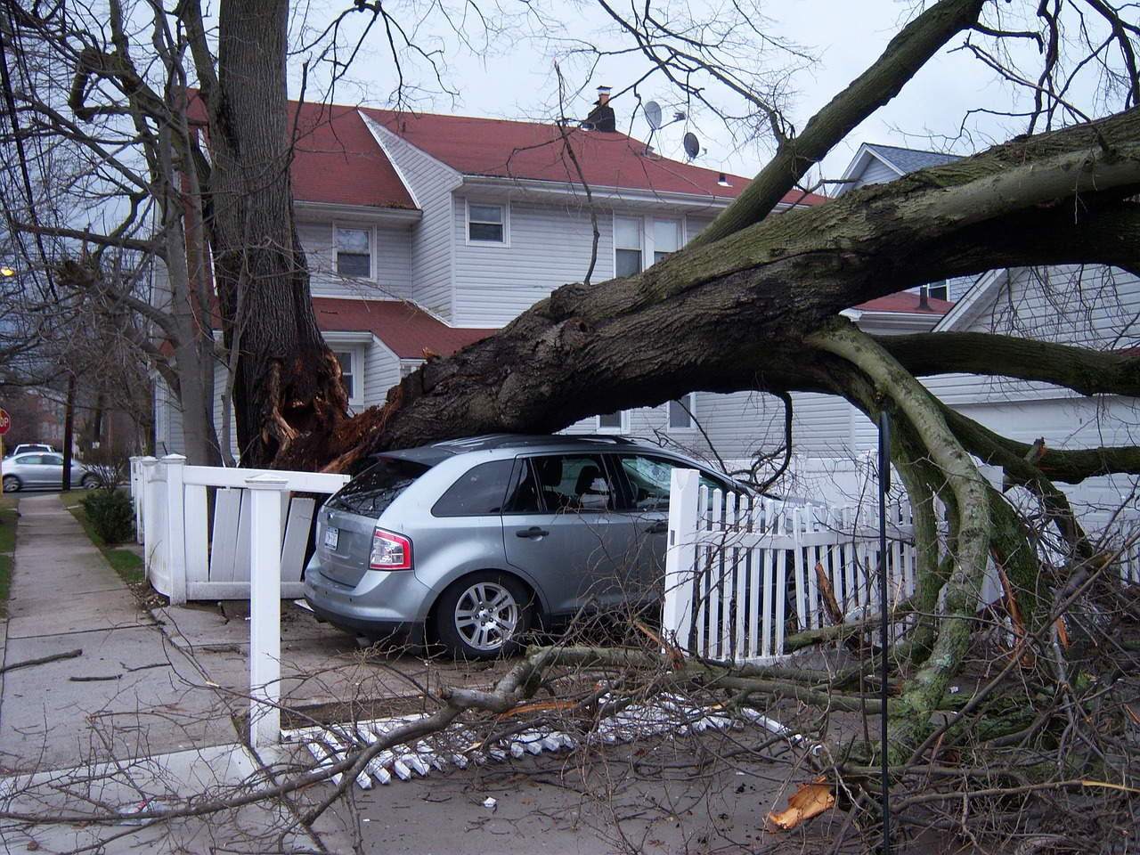 Storm Damage Photo by reslmaier on Pixabay https://pixabay.com/en/storm-damage-hurricane-wind-843732/